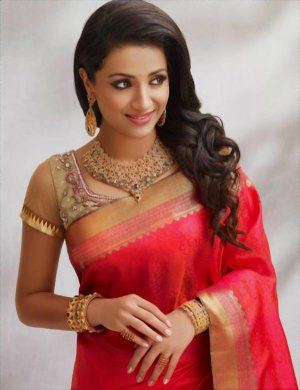 trisha saree stills